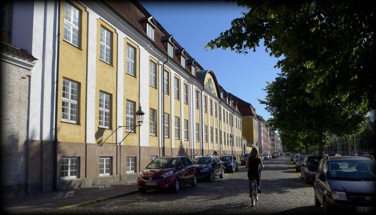 Oaser, Christianshavn 13.8.2015 156