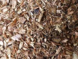 Sawdust -jagged, rough texture