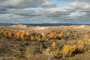 Fall's gorgeous golds make their way into the dunes at the Sleeping Bear Dunes