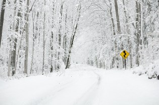 Photo:Heavy snow blankets a curvy forest-lined road