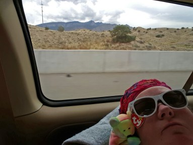 Nap time with my pal on the way back to Albuquerque after a day full of adventure.