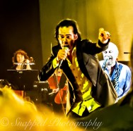 Nick-Cave-a7