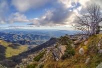 Mount Buffalo