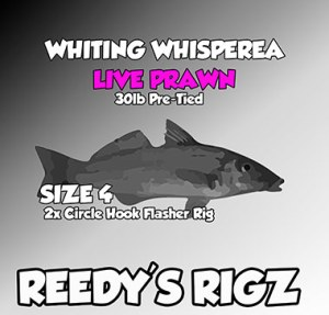 whiting rig diagram , whiting rig