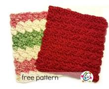 Freebie: Scalloped Wash Cloth