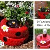 DIY Ladybug Planter and Table