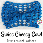 Free Pattern: Swiss Cheesy Quick and Easy Cowl
