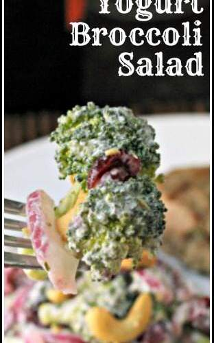 Yogurt Broccoli Salad - an easy homemade broccoli salad and side dish recipe | SnappyGourmet.com