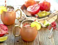 Christmas Cocktails (Pomegranate Moscow Mule)   snappygourmet.com