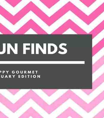 Fun Finds and Gift Ideas (February Edition) | SnappyGourmet.com