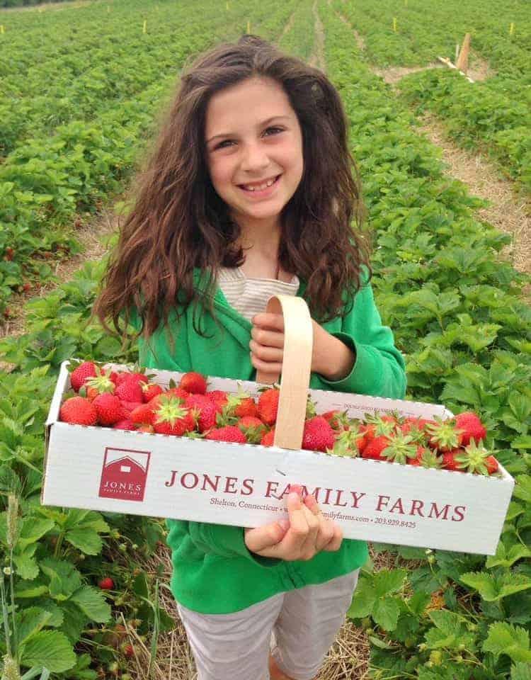 Strawberry Season - basket of strawberries