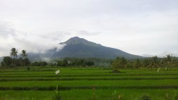 Landscape: Mt Kanlaon Volcano