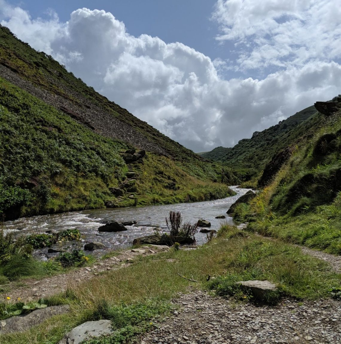heddon valley small river surrounded by green hills and wild flowers