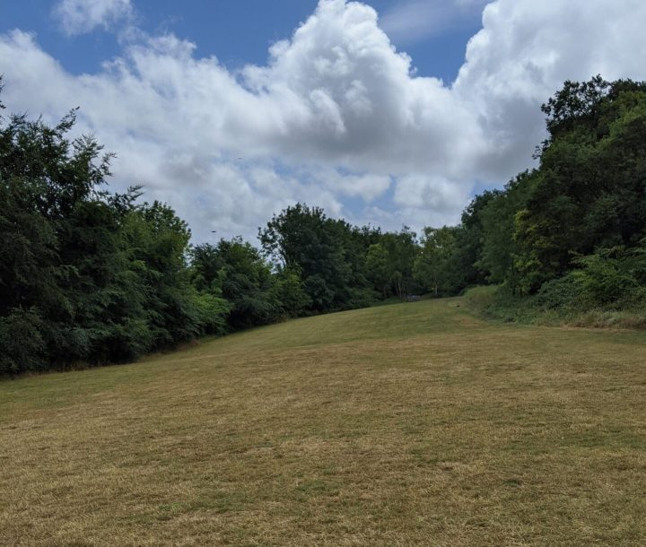 green grass area surrounded by trees white clouds and blue sky