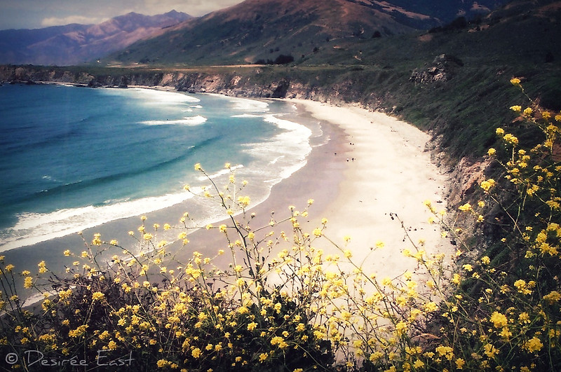 my fave big sur shot. by desiree east