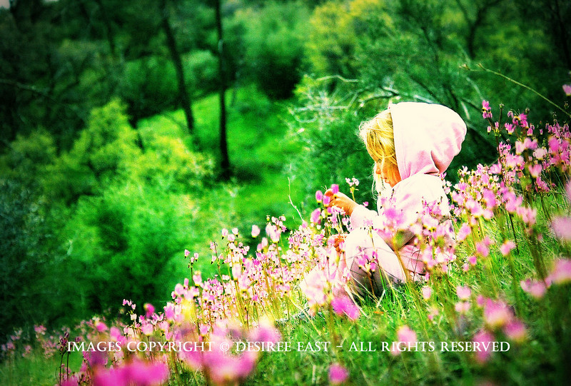 abundance. photo by desiree east