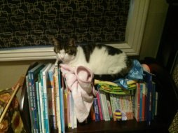 snoopy_bookshelf