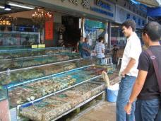 seaside_aquarium_ryan_walter.jpg