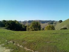 hill_view_1.jpg