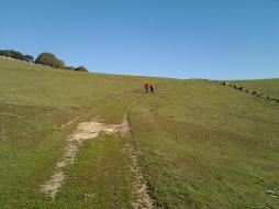 ridge_trail_dad_vanessa_hiking.jpg