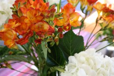 flowers_4.jpg