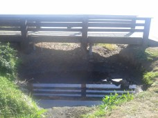 bridge_over_pond