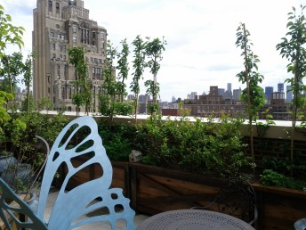 google_new_york_rooftop_deck