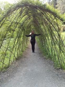 gina_in_tree_bower