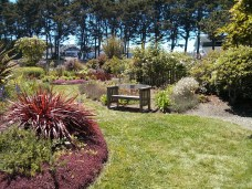 botanical_garden_bench