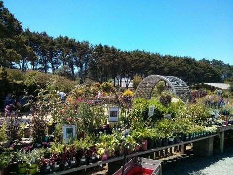 botanical_garden_nursery