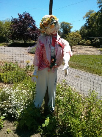 botanical_garden_scarecrow