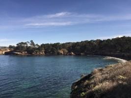 point_lobos_beach