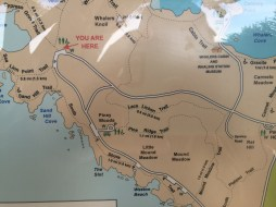 point_lobos_map