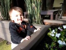 planter_smile