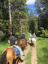 horseback_behind_group