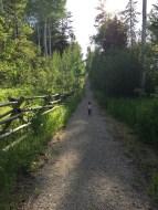 house_trail