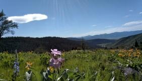 victor_hike_meadow_1