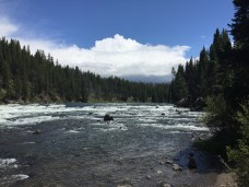 yellowstone_river