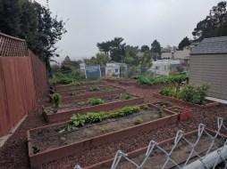 glen_ridge_community_garden
