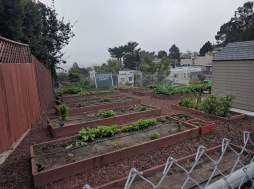 glen_ridge_community_garden