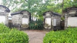 lafayette_cemetery_greenery