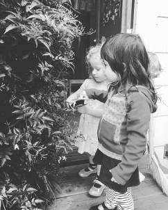 playschool_inspecting_plant