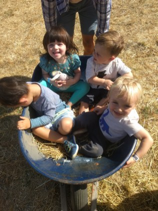 pumpkin_patch_wheelbarrow_kids