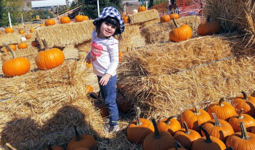 pumpkins_3
