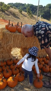 pumpkins_with_grandpa