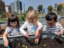 gardening_kids