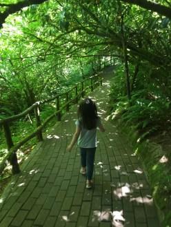 portland_fairyland_walking