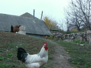 Somewhere in Moldova.