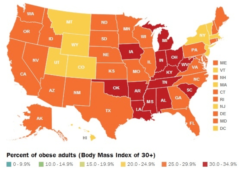 obesity in usa Obesity in america essay 1285 words | 6 pages a long time, obesity has been one of the notable health concerns that america has struggled with during the last five decades obesity as a health concern is not limited to america alone, it is a serious concern among other affluent societies like european countries.