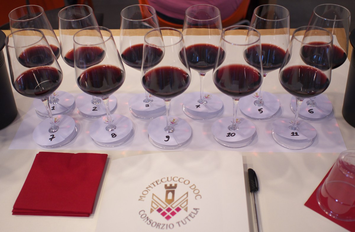 Eleven glasses of Montecucco Sangiovese for the eleven vintages presented at the vertical tasting